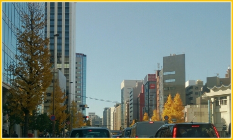 20151221都会の黄葉