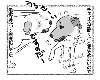羊の国のラブラドール絵日記シニア!!「後にひかせて」4