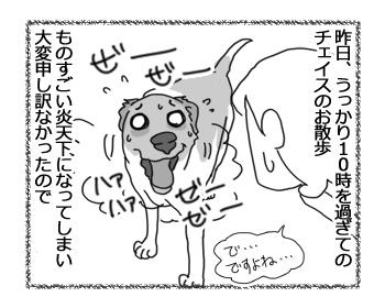 羊の国のラブラドール絵日記シニア!!「夏に完敗」1