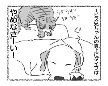 羊の国のラブラドール絵日記シニア!!「こわいものしらず」4