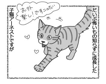 羊の国のラブラドール絵日記シニア!!「ファームの猫」1