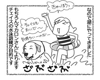 羊の国のラブラドール絵日記シニア!!「作戦大失敗!」2