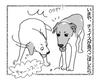 羊の国のラブラドール絵日記シニア!!「Love & Peace」3