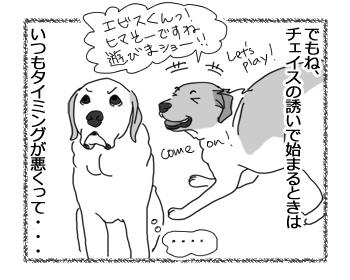 羊の国のラブラドール絵日記シニア!!「がんばってるチェイス!」3