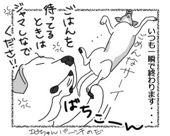 羊の国のラブラドール絵日記シニア!!「がんばってるチェイス!」4
