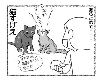羊の国のラブラドール絵日記シニア1!「テオテオファームの働き猫たち」4