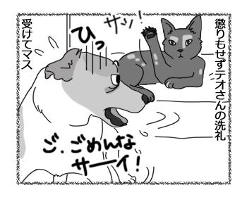 羊の国のラブラドール絵日記シニア!!「親子でやってみたいこと」2