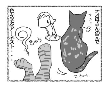 羊の国のラブラドール絵日記シニア!!「子猫アーネストの成長」4