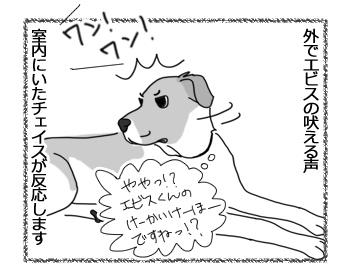 羊の国のラブラドール絵日記シニア!!「チェイスの失敗」1