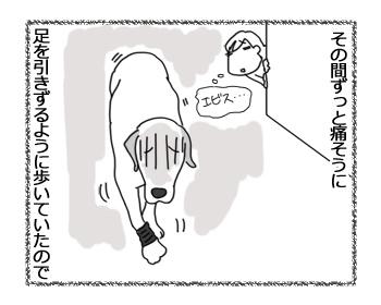 羊の国のラブラドール絵日記シニア!!「エビスの方程式」2