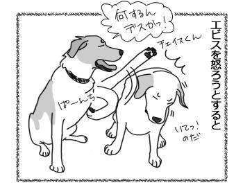 羊の国のラブラドール絵日記シニア!!「ダンスィー」4