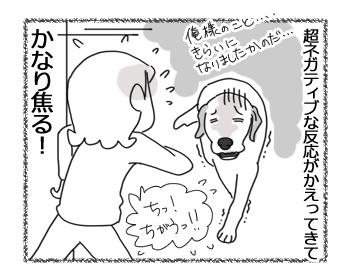 羊の国のラブラドール絵日記シニア!!「病は気から」4