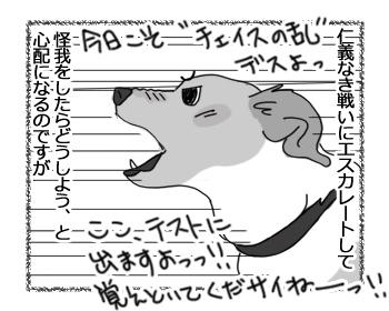 羊の国のラブラドール絵日記シニア!!「暗黙のルール」2