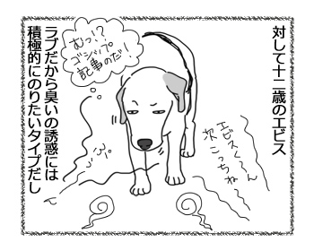 羊の国のラブラドール絵日記シニア!!「お散歩それぞれの速度」2