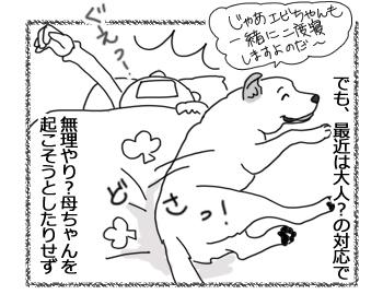 羊の国のラブラドール絵日記シニア!!「起こし方~上級者編~」2