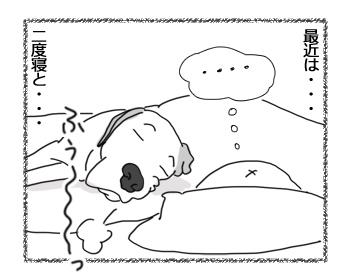 羊の国のラブラドール絵日記シニア!!「起こし方~上級者編~」3
