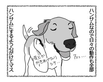 羊の国のラブラドール絵日記シニア!!「かっこいいボク」2