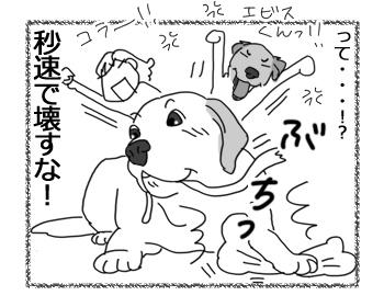 羊の国のラブラドール絵日記シニア!!「フンパツしたオモチャ」4