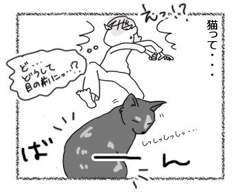 羊の国のラブラドール絵日記シニア!!「猫って・・・」2