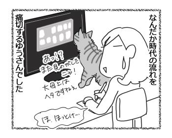 羊の国のラブラドール絵日記シニア!!「猫との暮らしに見る時代の流れ」4