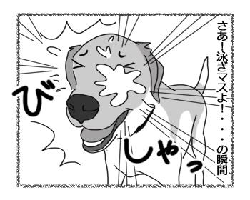 羊の国のラブラドール絵日記シニア!!「顔はやめてくだサーイ」3