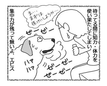 羊の国のラブラドール絵日記シニア!!「クリッカー・トレーニング」4