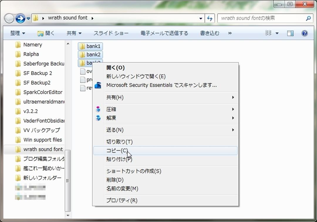 SS005ss.jpg