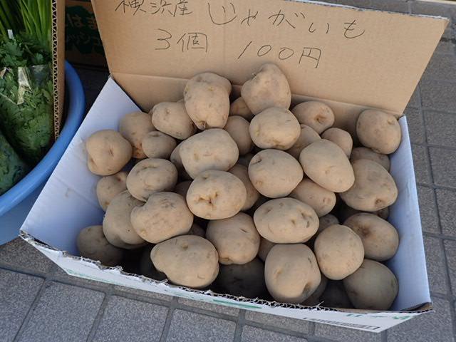 野菜直売 (7)