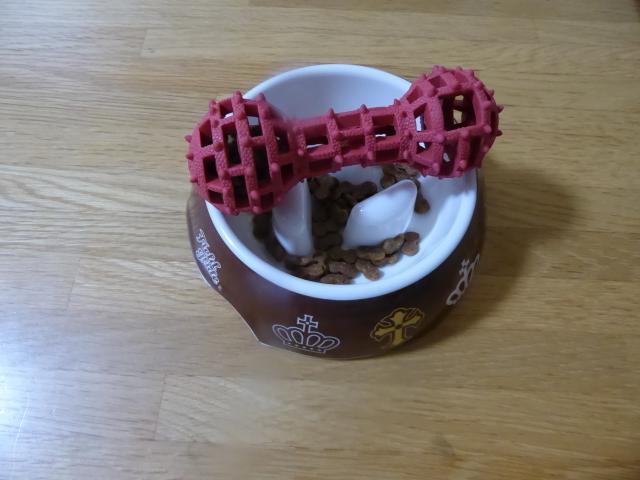 150826ポン太朝食②