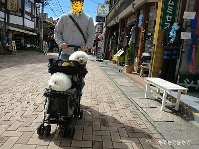 IMG_3161文字入り
