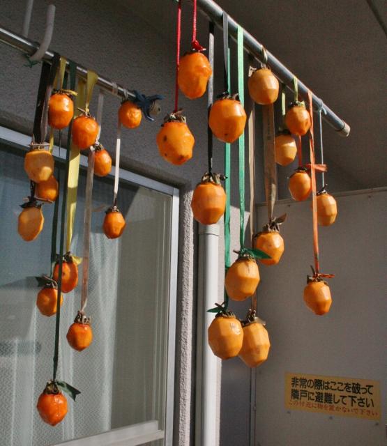 IMG_0273 干し柿(555x640)
