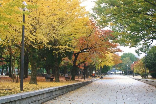 IMG_0438 平和公園の秋(640x427)