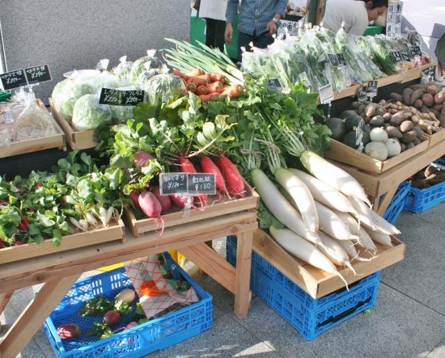 IMG_1364 無農薬野菜(640x516)