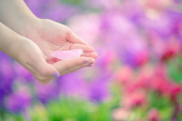 flower-in-both-hands_s.jpg