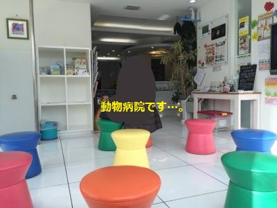 IMG_8793_convert_20160303195715.jpg