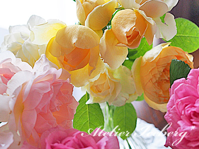 rose2015_157.jpg