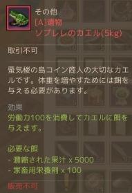 2015-11-15-10.jpg