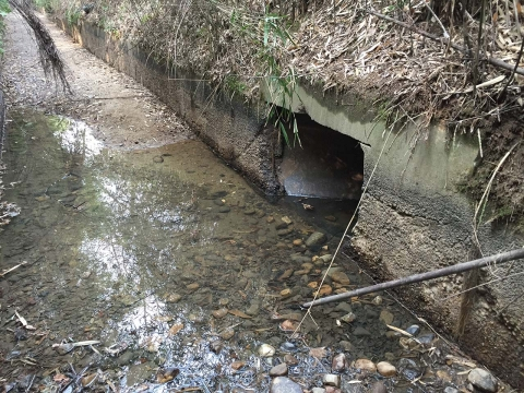 現在の取水口分岐点(2)