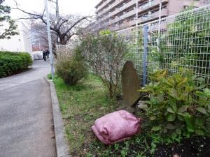 松竹大船撮影所落成記念の桜贈呈の碑