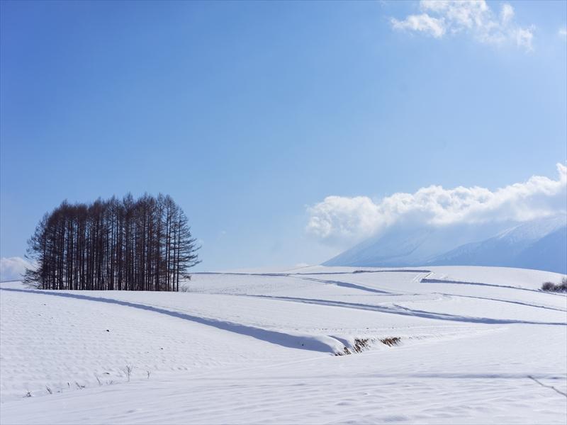 20141231_tsumagoi_a7r_no9_R.jpg
