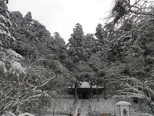 金剛山転法輪寺の霧氷
