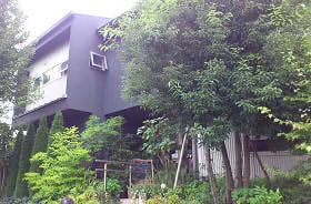 the grove cafe2 (1)