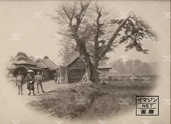 01-1451-233周辺神奈川生麦(0116A459)のコピー