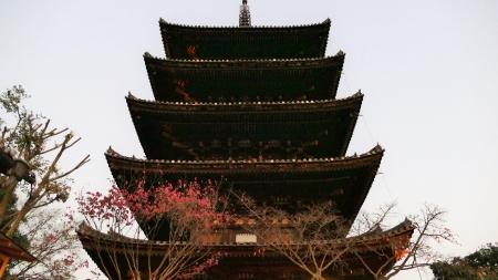 八坂の塔1m