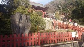 s-鶴岡八幡宮4