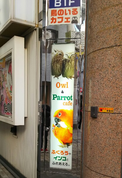 浅草のカフェ