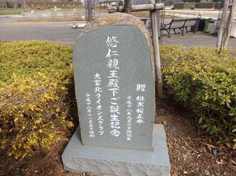 「大宮花の丘農林公苑-木本(1)」