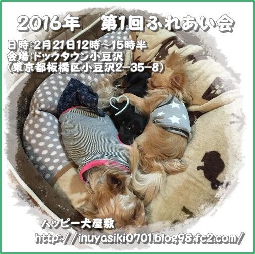 IMG_7896-2.jpg