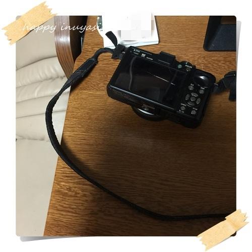 mini5IMG_8769-2.jpg