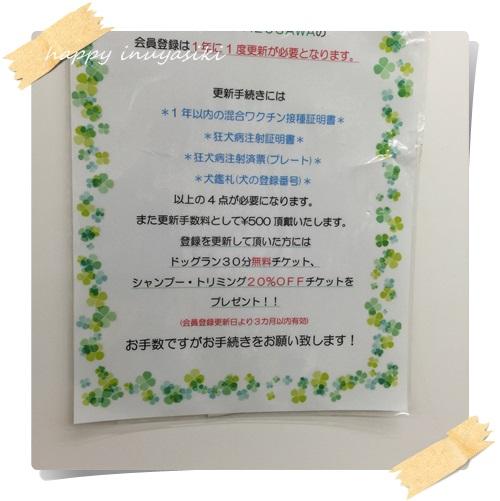 mini5IMG_9124.jpg